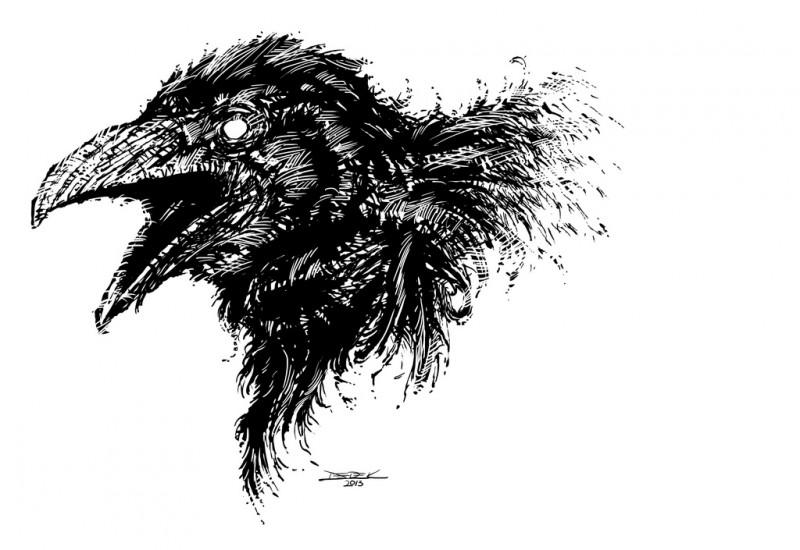 crow korea